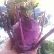 Kohlrabi grown by Pit Farm
